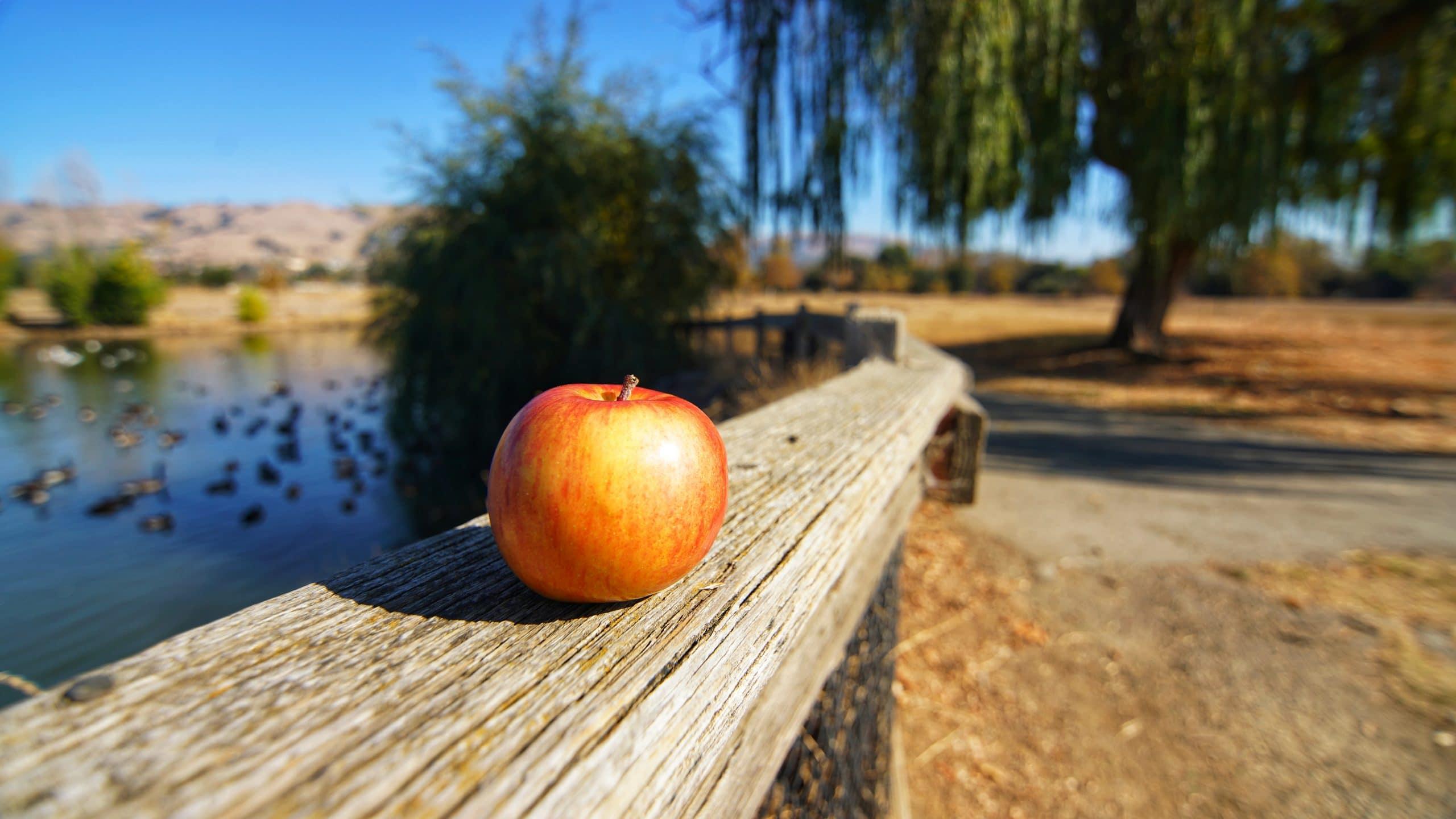 pomme sur rembarre devant un étang